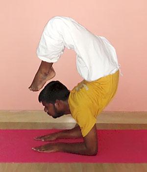 Yoga School Chennai, Tamil Nadu, India | School of Santhi